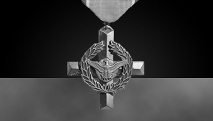 Air Force Cross (greyscale)