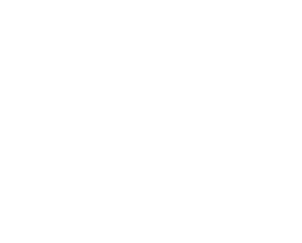Silhouette of soldier saluting