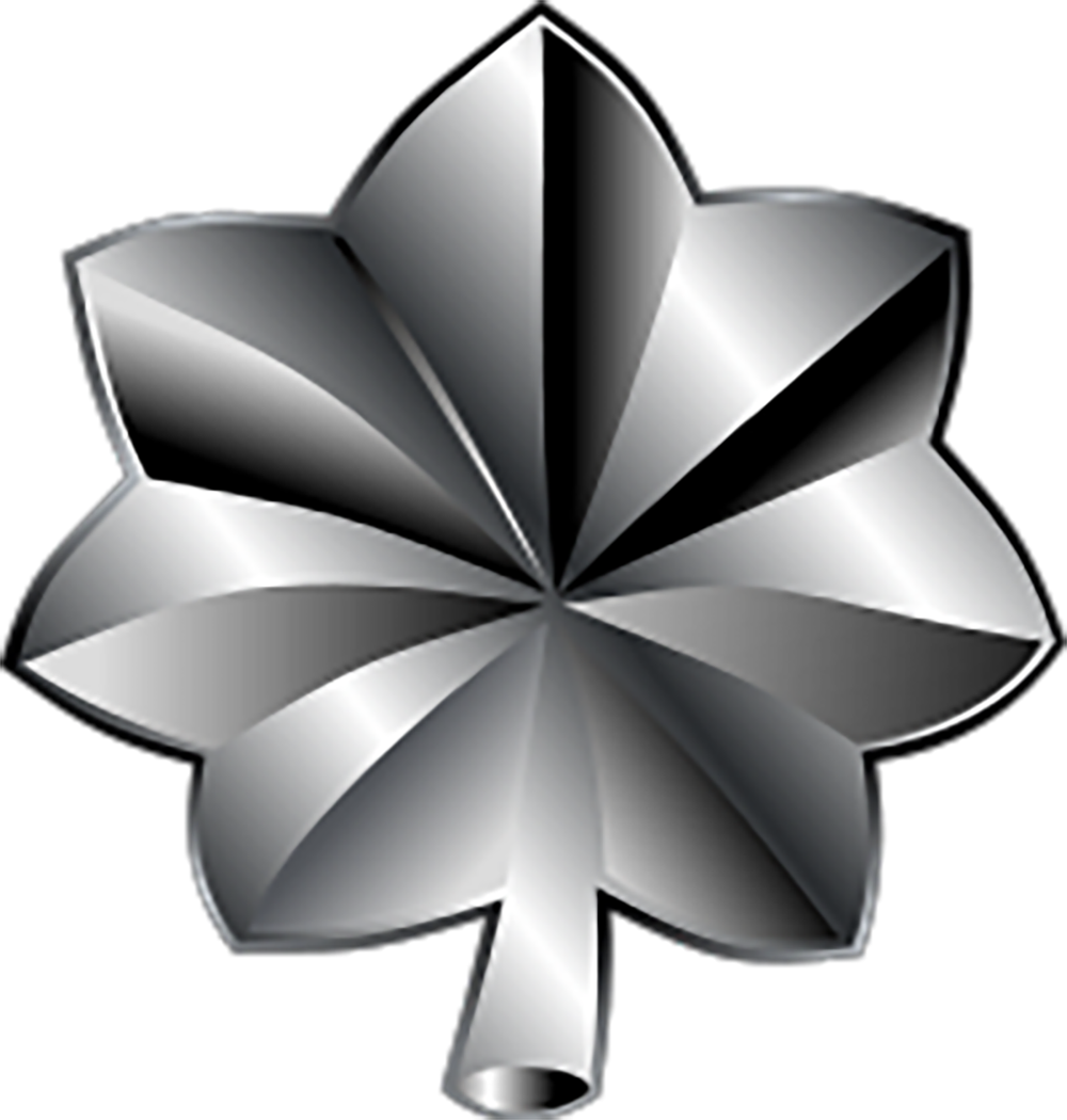 air force lieutenant colonel icon