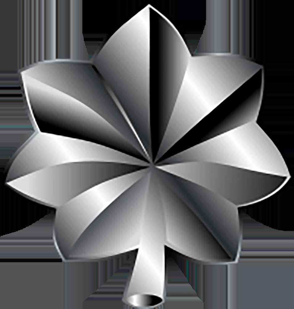 O-5 Lieutenant Colonel