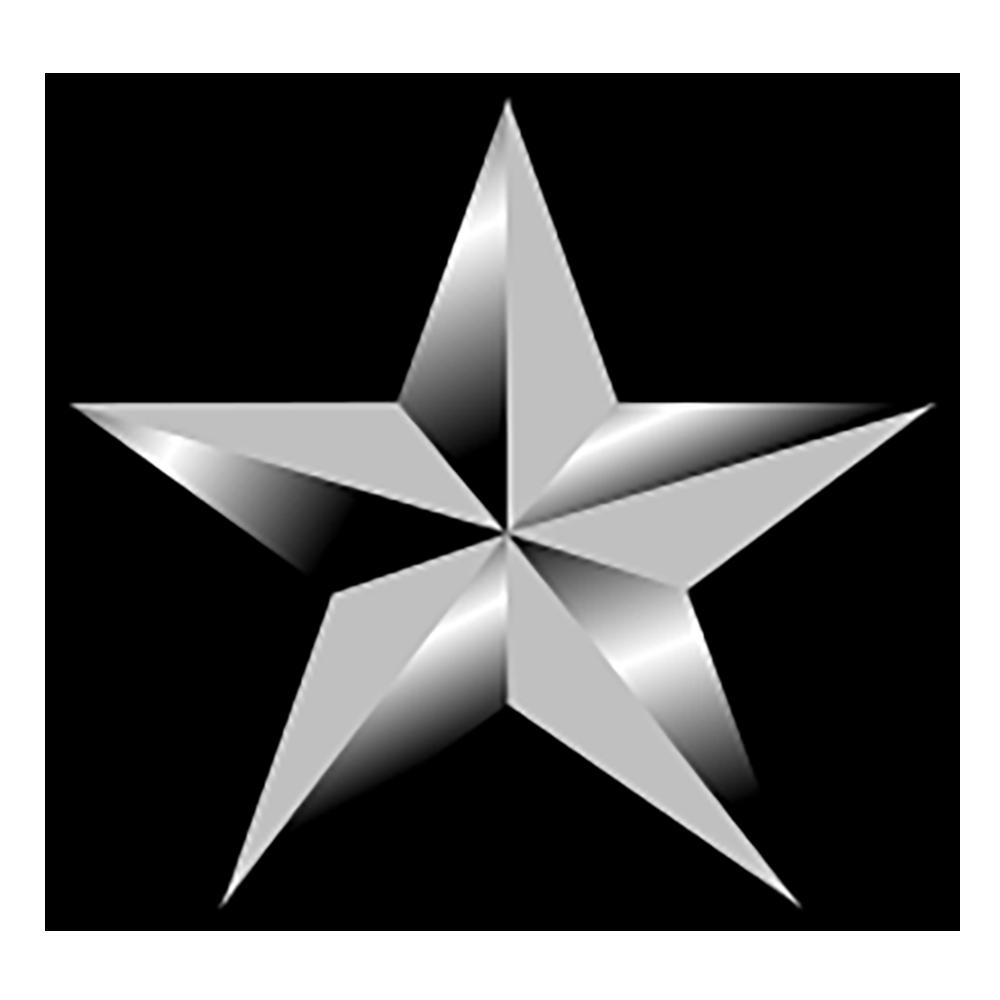 O-7 Brigadier General