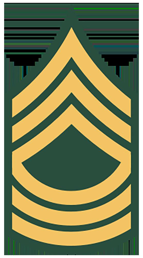 E-8 Master Sergeant