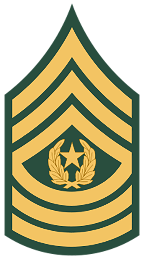 E-9 Command Sergeant Major